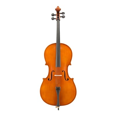 Eastman VC200 Andreas Eastman Step Up Cello - Outfit 4/4 for sale