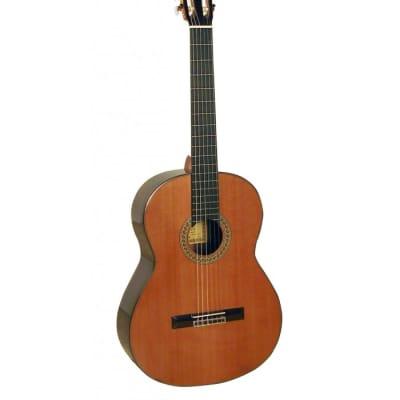 Guitare Acoustique Classique ESTEVE 7SR Table Cèdre Massif Naturel Brillant for sale