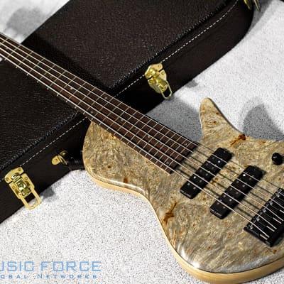 Fodera Custom Emperor II Elite 5-Buckeye Burl Top w/Indian Rosewood Fingerboard for sale