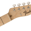 Fender Limited Edition Telecaster - Black Paisley