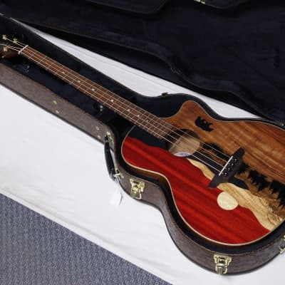 LUNA Vista Bear acoustic electric BASS guitar new w/ Hard Shell Case - Fishman for sale
