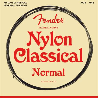 Fender Nylon Acoustic Strings, 100 Clear/Silver, Tie End, Gauges .028-.043, (6)