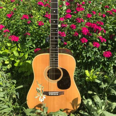 Sakura SW-77 Brazilian Rosewood MIJ for sale