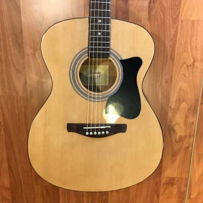 Ibanez IJVC50-NT Jam Pack Acoustic Guitar Bundle for sale