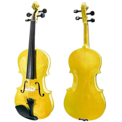 SKY 4/4 Full Size Solid Wood Gold Violin Beautiful Violin with Bow Brazilwood Bow Rosin