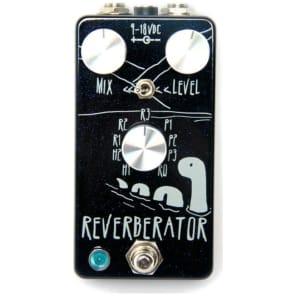 Dr. Scientist Mini Reverberator