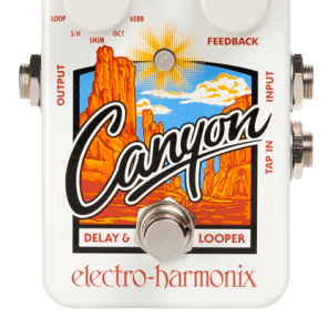 Electro Harmonix Canyon Delay and Looper for sale