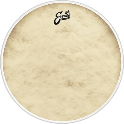 """Evans BD26GB4CT EQ4 Calftone Bass Drum Head - 26"""""""