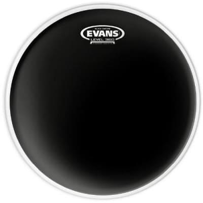 """Evans 14"""" Black Chrome and Hazy 200 Set"""
