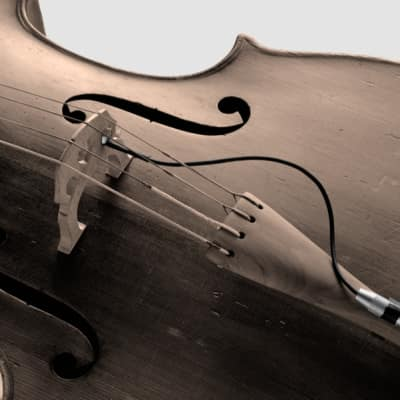 Schertler STAT-C-Set Electrostatic Transducer for Cello (with Stat-Pre) for sale