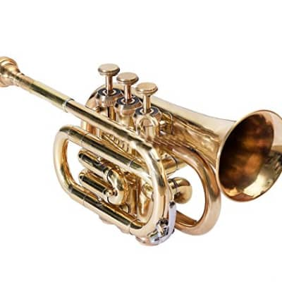 sai musicals po-11 Pocket Trumpet 3 Valve's Pro Shinning Brass with Mouth Piece and Case 2020