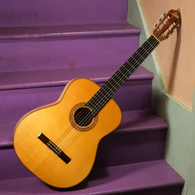 1967 Levin Model 113 (like Goya G-30) High-Grade Classical Guitar w/HSC (Vintage, Old, Sweden) for sale