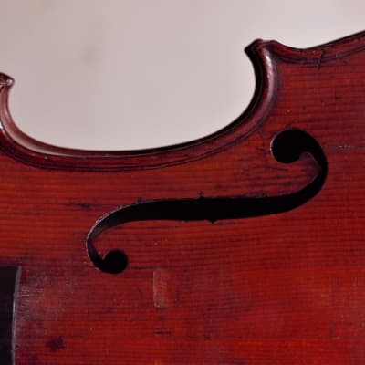 nice French Violin violin C, 1900