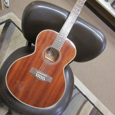 Giannini Craviola 12 strg. acoustic guitar for sale
