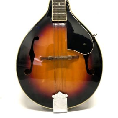 Montana Mandolin Tear Drop (6981) for sale