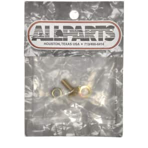 Allparts Hardware Set for Bigsby Arm