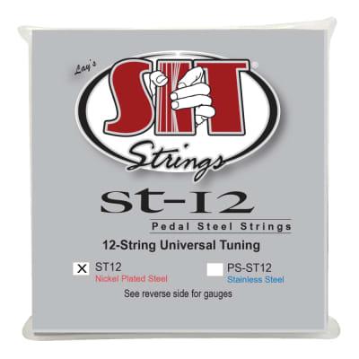 SIT 12-String Universal Pedal Steel ST-12