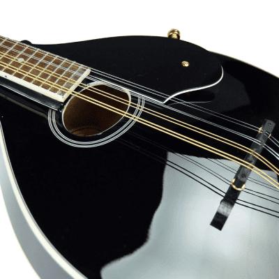 Washburn M1SDLB Bluegrass Series A-Style Mandolin