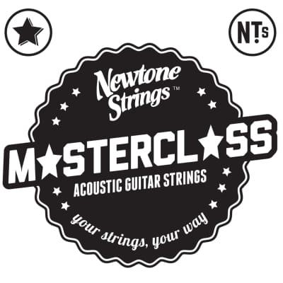 Newtone Master Class Phosphor Bronze Acoustic Strings 12-54