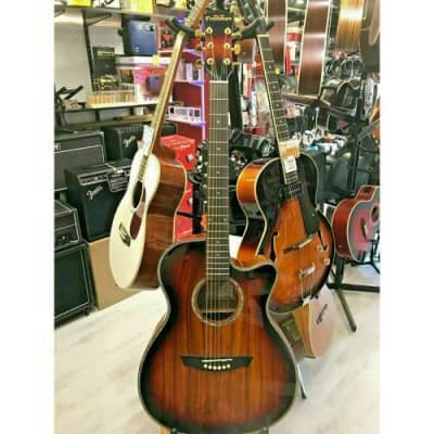 Freshman Limited Edition 'Koa' Cutaway Electro Acoustic Guitar. P/N FALTDKOAOC for sale