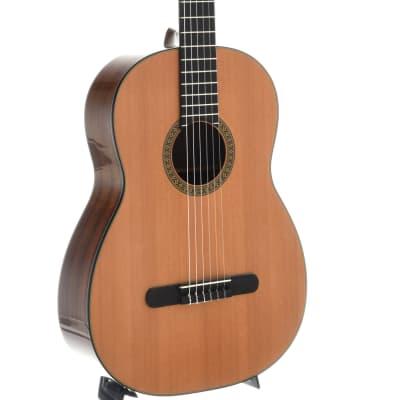 Martin Guitars For Sale >> Martin N 20 Acoustic Guitars