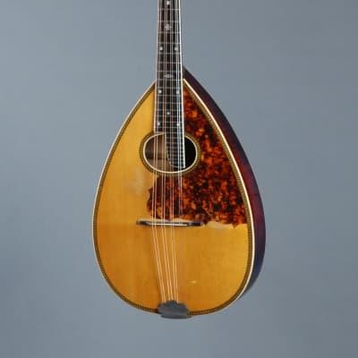 circa 1930 Stahl  Mandola  (Larson Bros made) for sale