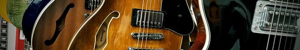 DL's Guitar Restoration - Santa Rosa