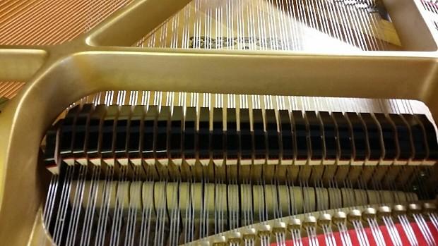 Yamaha c3 6 39 1 39 39 grand piano like new reverb for Yamaha c3 piano review