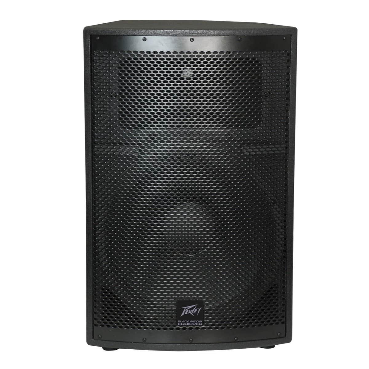 peavey sp2 ii passive speaker 500 watts 1x15 single reverb. Black Bedroom Furniture Sets. Home Design Ideas