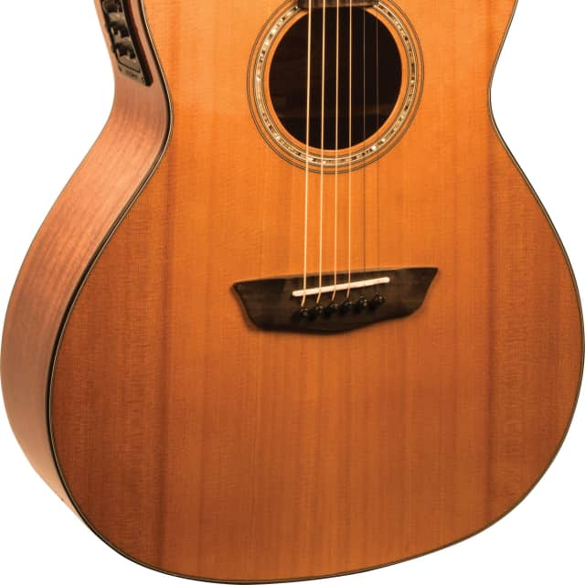 Washburn Woodline 100 WLG110SWCEK, Acoustic Electric, Grand Auditorium, Cedar Top, Mahogany B&S image