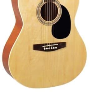 Indiana IDA-N Dakota 39 Series Acoustic Guitar - Natural for sale