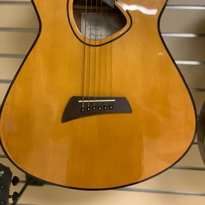 Avante Baritone Electric/Acoustic for sale