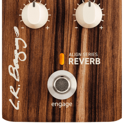 LR Baggs Align Series Reverb *Free Shipping in the USA* for sale