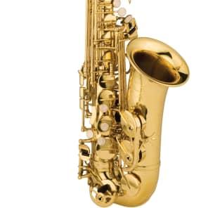 Ravel RAS202 Student Eb Alto Sax