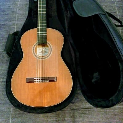 VV:  2021 Hippner Reyes Flamenco Especiale guitar, nice case,  great guitar, great deal, BEST PRICE for sale