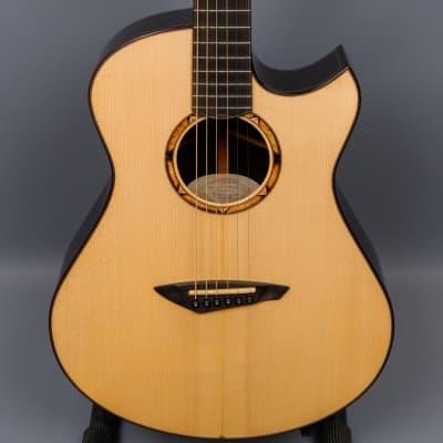 2011 Michael Bashkin #100 Placencia OM African Blackwood / Adirondack Spruce Acoustic Guitar for sale