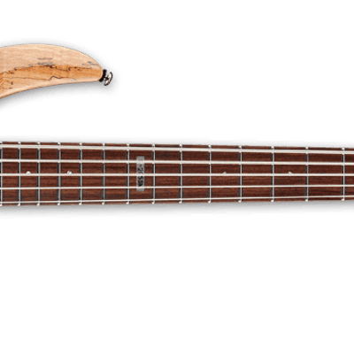 LTD 5 String Spalted Maple LB205SNMS