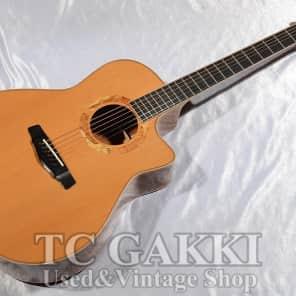 Yokoyama Guitars AR CM for sale