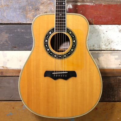 Bozo Model B80S Acoustic With Pickup for sale