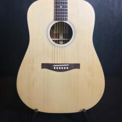 Eastman AC-DR1 Acoustic Guitar