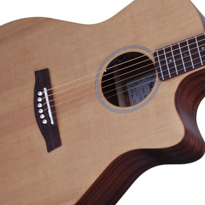 Schecter DELUXE ACOUSTIC Natural Satin for sale