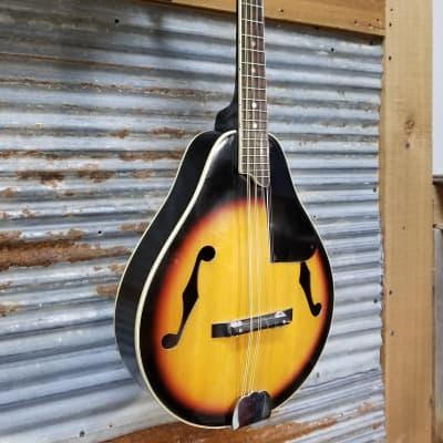 Harmony M100 Mandolin 1970s Sunburst for sale