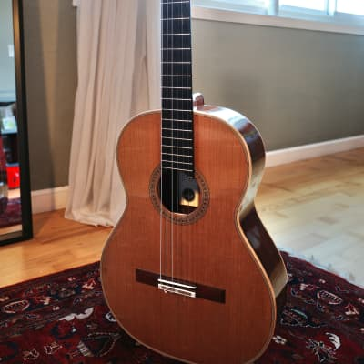 Daniel Stark Concert Double Top 2017 Cedar/Spruce for sale
