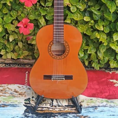 Sobrinos de Santos Hernandez  Spain  70s  Classical for sale