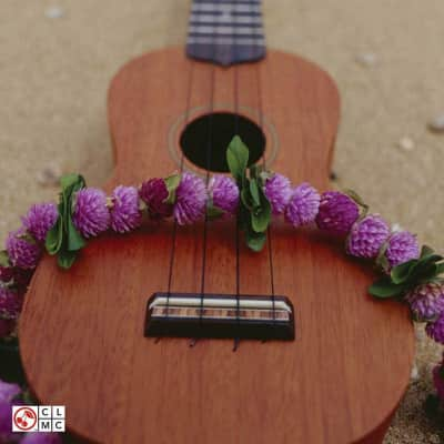 150 Of The Most Beautiful Songs Ever Ukulele Chord Songbook Reverb