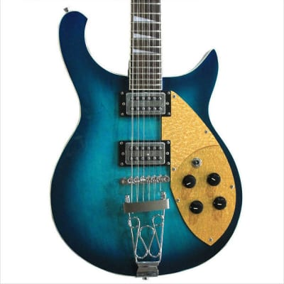 Fishbone FTP-BLUE-12- String 2013 Blue Burst Superb player image