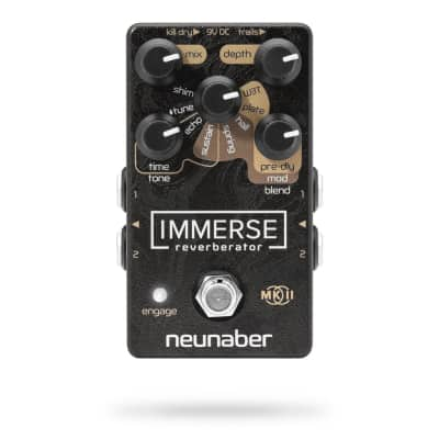 Neunaber Audio Immerse Reverberator V2 2019