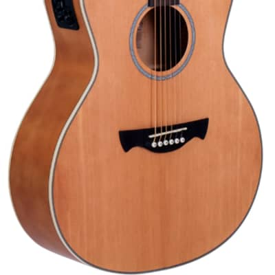 Tagima - TW-29NS - Medium Acoustic Electric Guitar Cutaway - Gloss Natural Satin for sale
