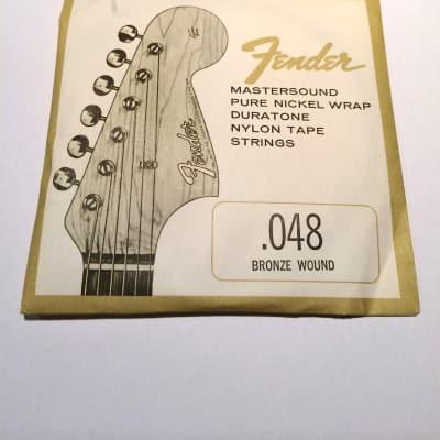 Fender RARE Mastersound Bronze Wound 0.48 60's