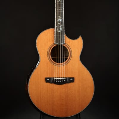 Ryan Signature Series Nightingale Grand Soloist - Lucky Strike Redwood/The Tree *VIDEO* for sale